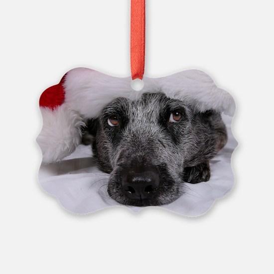 Christmas Blue Heeler Ornament