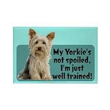 Yorkies Single