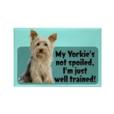 My Yorkie Spoiled? - Rectangle Magnet