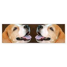 Beagle Dog Bumper Sticker