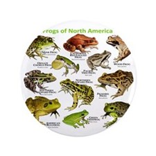 "Frogs of North America 3.5"" Button"