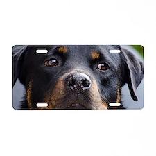 Rottweiler Dog Aluminum License Plate