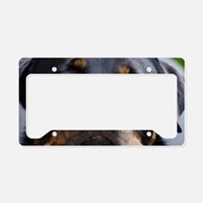 Rottweiler Dog License Plate Holder