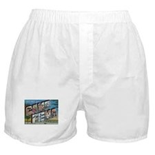 Camp FEMA Boxer Shorts