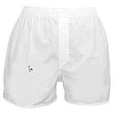4 Boxer Shorts