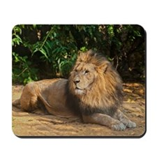 Male Lion Mousepad