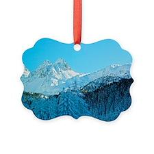 Switzerland Ornament