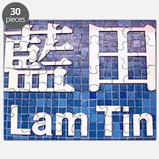 Hong Kong Subway Lam Tin 1750 Puzzle