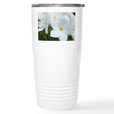 Aruba White Flowers-10 Travel Mug