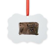 (16) Mountain Lion 1 Ornament