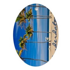 3g_0063__DSC00081 Oval Ornament