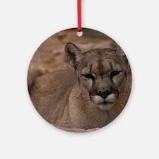 (12) Mountain Lion 1 Round Ornament