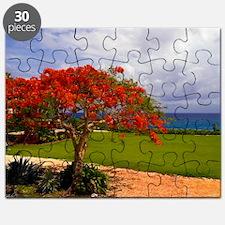 Flamboyant Tree Puzzle