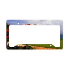 Flamboyant Tree License Plate Holder