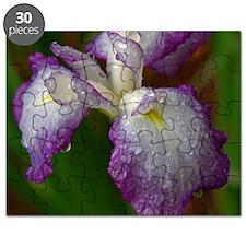Rain Soaked Iris Puzzle