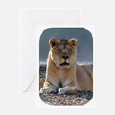 Sabu with rounded corners1 Greeting Card