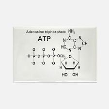 ATP Rectangle Magnet