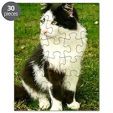 BigGuy4 Puzzle