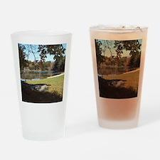 Gimp2-3-11-Canoe-jpg-under tree Drinking Glass
