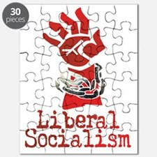 Liberal Socialism Puzzle