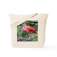 Scarlet Ibis Tile Tote Bag