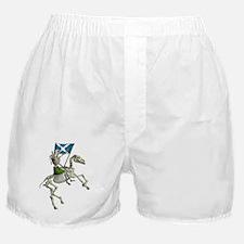 Hearld Boxer Shorts