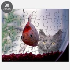 Fishy Wishes Puzzle