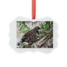 Spruce Grouse-6 Ornament