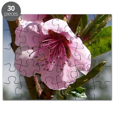 flower-horz-24 Puzzle