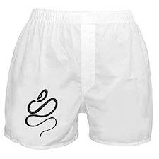 snake sigil trans Boxer Shorts