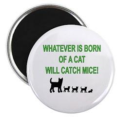 Mouse Catcher 2.25