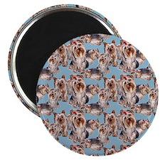 yorkie shower curtain blue Magnet