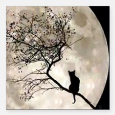 """catmoon7100 Square Car Magnet 3"""" x 3"""""""