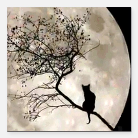 "catmoon7100 Square Car Magnet 3"" x 3"""