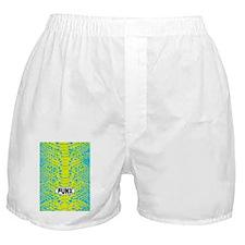 SnakeskinIPHONE 4 SLIDER Boxer Shorts