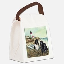 2 newfs and boat  Canvas Lunch Bag