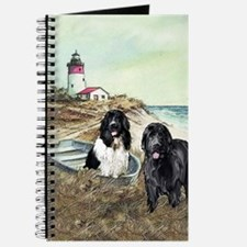 2 newfs and boat  Journal