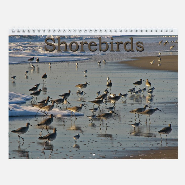 Shorebirds Wall Calendar