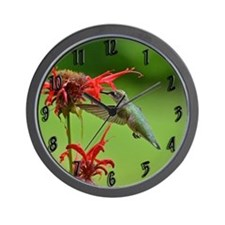 Hummingbird And Bee Balm Wall Clock