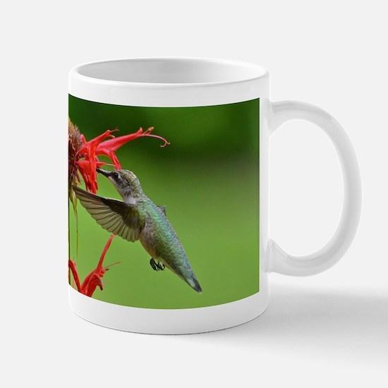Hummingbird and bee balm Mug