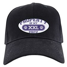 pbgvproperty Baseball Hat