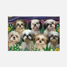 8x10-7 SHIH TZUS-Moonlight Garden Rectangle Magnet
