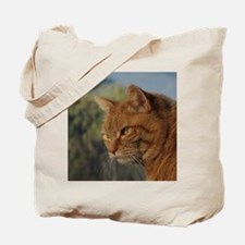 Tigger Tote Bag