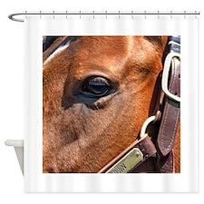 BIG BROWN Shower Curtain