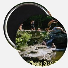 mtcheaha_statepark Magnet