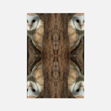 2-OWLS Rectangle Magnet