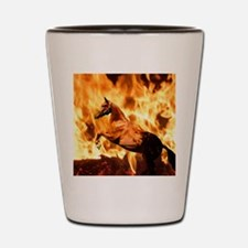 DiegosFire2Cafe Shot Glass