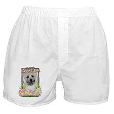 EasterEggCookiesCairnTeddyBearCP Boxer Shorts