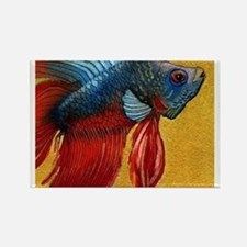 Beautiful Betta Fish Rectangle Magnet