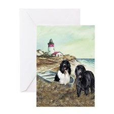 2 newfs and boat 100dpi Greeting Card